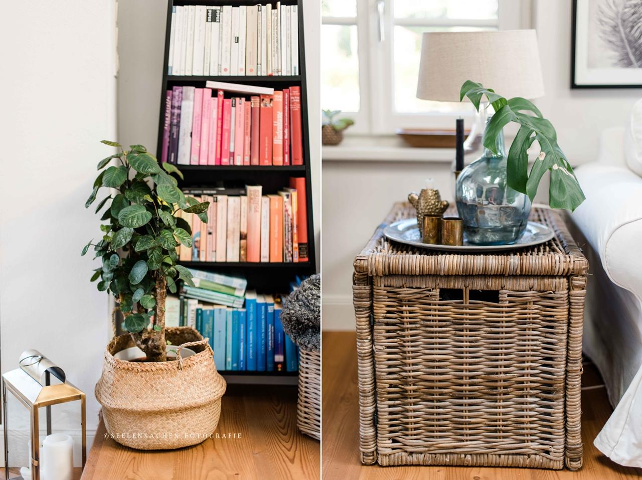 Frühjahrsspecial: It`s green! Zimmerpflanzen