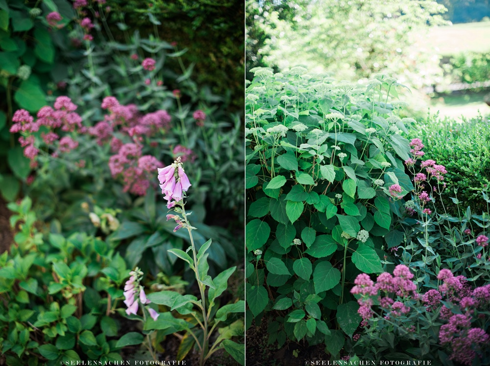 Sommerspecial: Ab in den Garten! ~ Staudenbeete