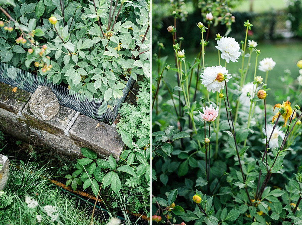 Der Seelensachengarten Ende des Sommers