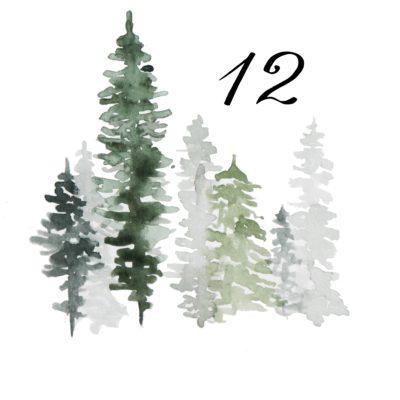 12. Dezember – Stille