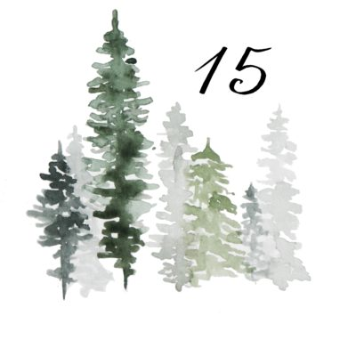 15. Dezember – Neuanfang